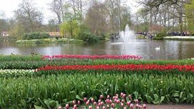 Keukenhof garden Holland Royalty Free Stock Photos