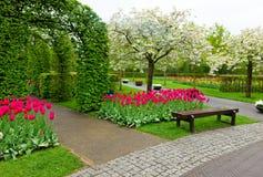 Keukenhof garden, Netherlands Royalty Free Stock Photo