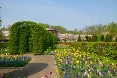 Keukenhof garden at sunny day , Netherlands Stock Image