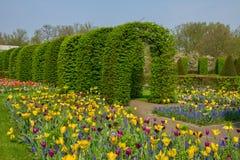 Keukenhof garden at sunny day , Netherlands Royalty Free Stock Photography