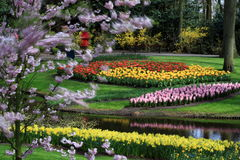 Keukenhof Gardens. Keukenhof Flower Gardens near Lisse, The Netherlands royalty free stock photo