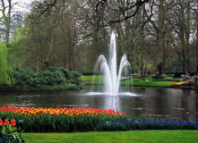 Keukenhof Gardens Fountain. A fountain decorates a lake surrounded by spring tulips in Keukenhof Gardens, Lisse, The Netherlands Royalty Free Stock Photography