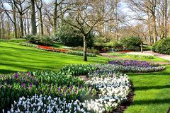 Keukenhof gardens. Spectacle at the annual Keukenhof Gardens display near Amsterdam, the Netherlands stock photo