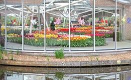 Keukenhof - Garten von Europa, die Niederlande lizenzfreies stockbild