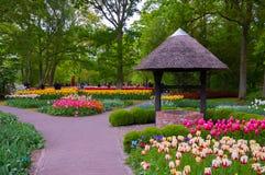 KEUKENHOF HOLLANDE - L'AMI 2014 : Les tulipes roses, rouges et jaunes colorées près jaillissent Images stock