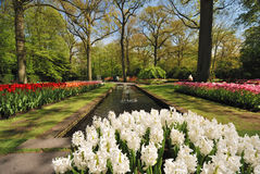 Keukenhof, Netherlands Royalty Free Stock Photography