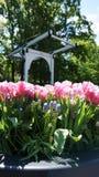 keukenhof,netherlands,holland;11/05/2019: Stunning spring landscape, famous Keukenhof garden with colorful fresh tulips, stock images