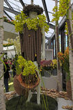 Orchid floristic decor in flower greenhouse in Keukenhof Garden, Netherlands. KEUKENHOF, NETHERLANDS - MAY 5, 2016: Orchid floristic decor and dummy in flower stock photos