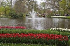 Keukenhof ogród Kwiecień 2015 Fotografia Stock