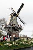 Keukenhof, Paesi Bassi Immagine Stock