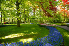Keukenhof park Royalty Free Stock Photos