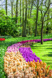 Keukenhof park . Holland Stock Photo
