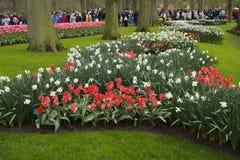 Keukenhof park Holland Royalty Free Stock Images