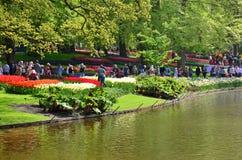 Keukenhof trädgård, Nederländerna - Maj 10: Färgrika blommor och blomningen i holländsk vår arbeta i trädgården Keukenhof som är  Arkivfoto