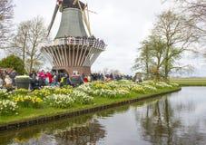 Keukenhof trädgårdar, Nederländerna Arkivbilder
