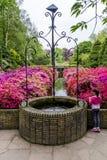 Keukenhof Tulip Gardens Fotografering för Bildbyråer