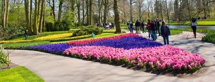 Keukenhofblommaträdgården Royaltyfria Foton