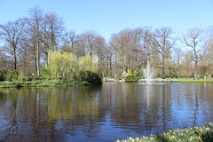 Keukenhofpark in Nederland Stock Foto