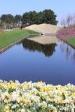 Keukenhofpark in Nederland Royalty-vrije Stock Foto's