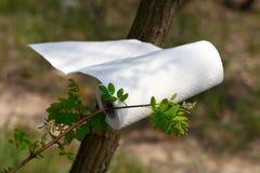 Keukenrolbroodje die in de wind in bos bij zondag golven Royalty-vrije Stock Afbeeldingen
