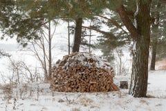 Keurig gestapelde stapel van brandhout in de winter stock afbeeldingen