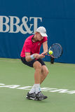 Kevin Anderson Royalty-vrije Stock Afbeelding