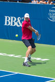 Kevin Anderson Stock Images