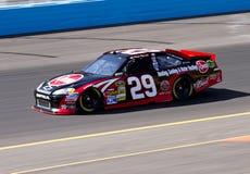 Kevin Harvick  NASCAR Sprint Cup Driver Stock Photos