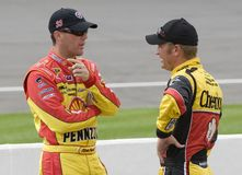 Kevin Harvick parle avec Clint Bowyer images stock