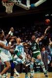 Kevin McHale, Celtics de Boston Photographie stock libre de droits