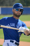 Kevin Pillar Images stock