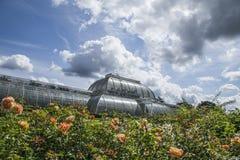 Kew庭院、温室、玫瑰和天空 免版税库存图片