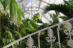 Kew庭院的维多利亚女王时代的玻璃房子 免版税库存照片