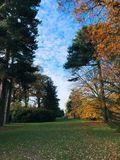 Kew royaltyfria foton