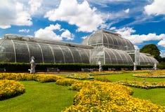 Kew arbeitet Gewächshaus in London im Garten Stockfoto