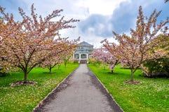 Kew botanisk trädgård i våren, London, UK royaltyfria bilder