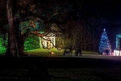 Kew-Gärten in der Weihnachtszeit, London stockbild