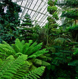 Kew Gardens Stock Photo