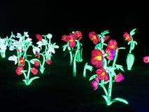 Kew Gardens Christmas Stock Image