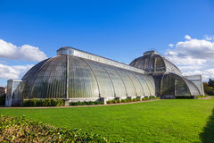 Kew Gardens Palm House Royalty Free Stock Image