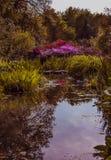 Kew-Garten London Lizenzfreies Stockfoto