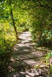 Kew Mae Pan Nature slinga Arkivfoton