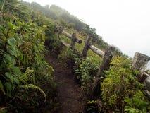 Kew Mae Pan Nature Trail, parque nacional de Doi Inthanon Imagen de archivo