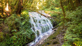 Kew Mae Pan vattenfall Arkivfoto