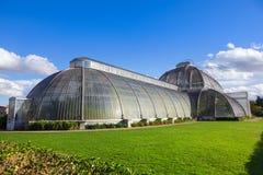 Kew ogródów Palmowy dom Obraz Royalty Free