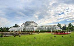 Kew ogródy, Anglia Zdjęcia Stock