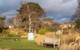 Kew ogródy w zimie, jesieni/ zdjęcie stock