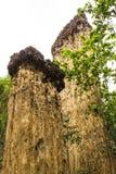 Kew Sue Ten in Doi Lo  Chiangmai , Grand Canyon National Park Royalty Free Stock Photo