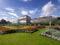 KEW-TRÄDGÅRDAR, LONDON, UK SEPTEMBER 15, 2018: Gömma i handflatanhuset på Kew trädgårdar, London, värma sig i sol för sen sommar  royaltyfri bild