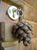 Key. Pine cone Stock Images